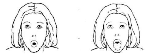 Лев - упражнение бодифлекс для лица