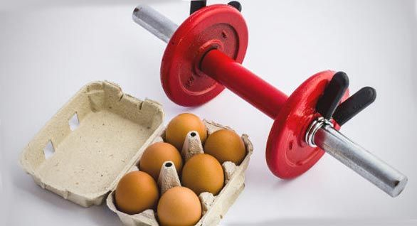 Протеины выполняют множество функций в организме
