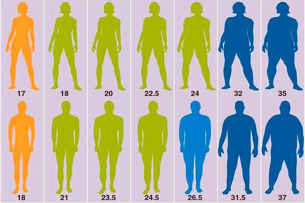 Индекс массы для мужчин и женщин